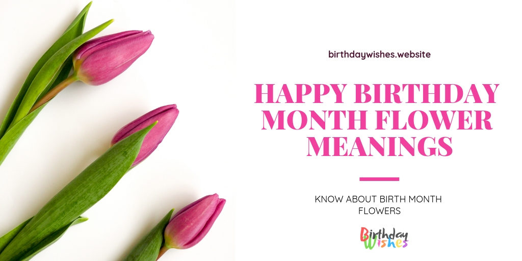 Happy Birthday Month Flower Meanings - Flower Symbol Friendship